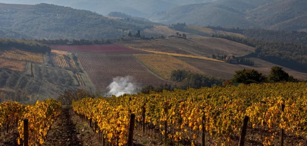 Conca d'Oro, Panzano, Toskana
