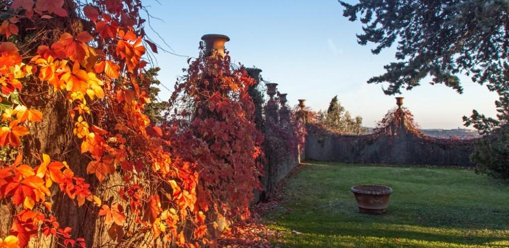 Blick nach Radda, Toskana