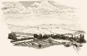 Chianti-Landschaft bei Castellina in Chianti