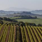 Castelllina in Chianti, Toskana