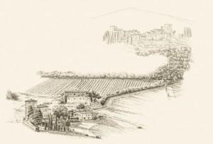 Castello di Meleto, Chianti-Wein