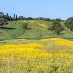 Maremma, Toskana