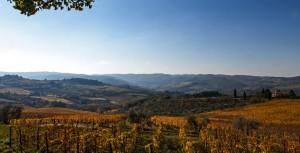 Panzano, Chianti, Toskana
