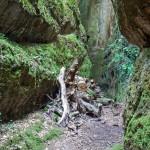 Tuffsteinhöhle, città del tufo, Toskana