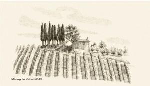 Weinberge bei Cetona, Zeichnung
