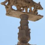 Dom in Siena, Toskana, die capitolinische Wölfin